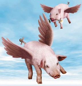 pigs_flying1